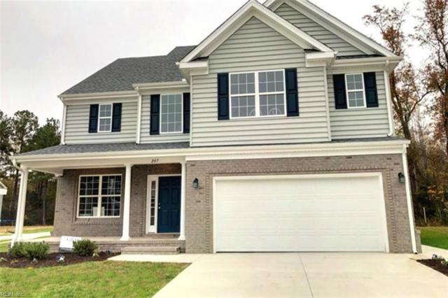 1349 Auburn Hill Dr, Chesapeake, VA 23320 (#10179724) :: Abbitt Realty Co.