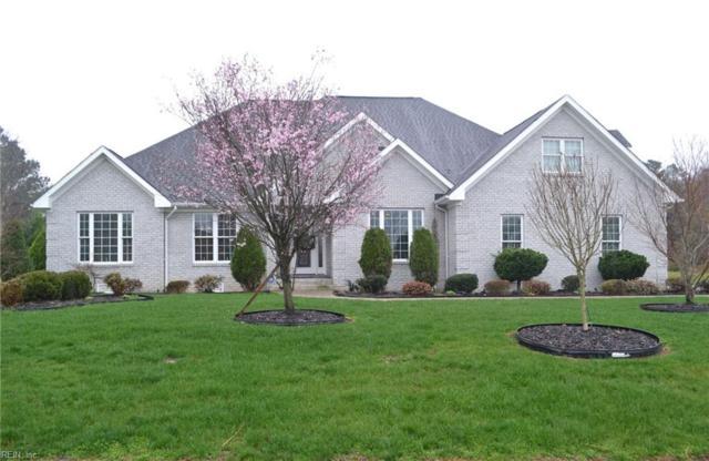 1407 Cypress Creek Pw, Isle of Wight County, VA 23430 (#10180872) :: The Kris Weaver Real Estate Team