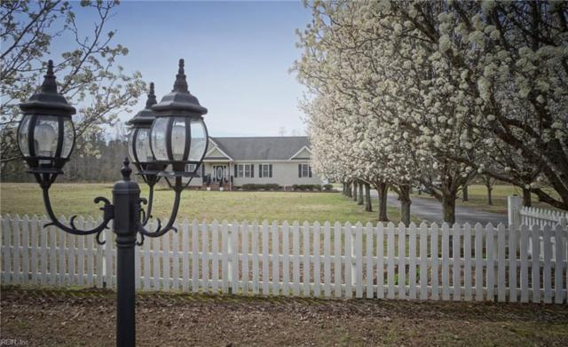 681 Lake Meade Dr, Suffolk, VA 23434 (MLS #10181052) :: Chantel Ray Real Estate
