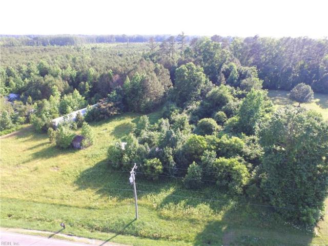 3135 Carolina Rd, Suffolk, VA 23434 (#10181075) :: The Kris Weaver Real Estate Team