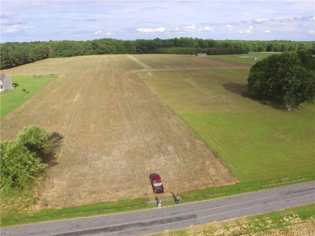 4560 Desert Rd, Suffolk, VA 23434 (#10181078) :: The Kris Weaver Real Estate Team