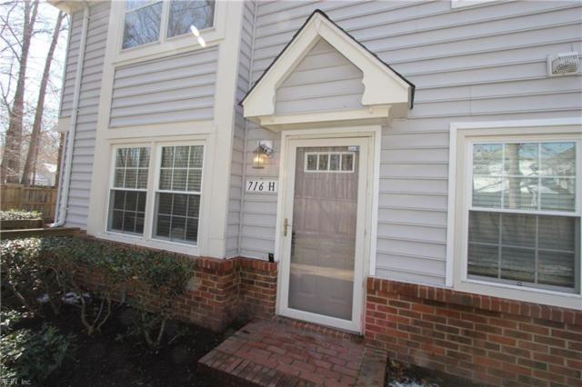 716 Rapidan River Ct H, Chesapeake, VA 23320 (MLS #10181195) :: Chantel Ray Real Estate