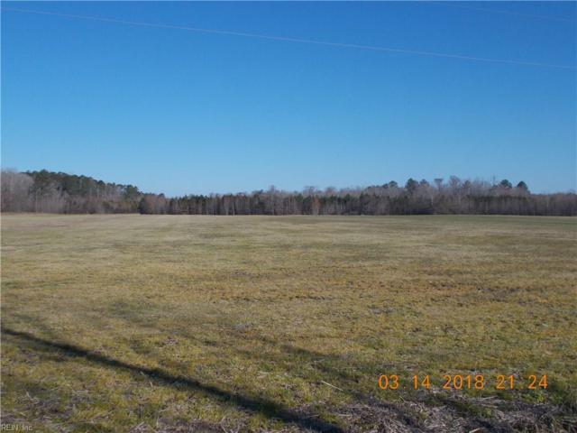196AC Ballahack Rd, Chesapeake, VA 23322 (MLS #10182715) :: Chantel Ray Real Estate