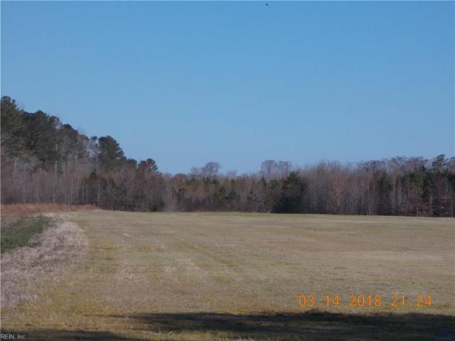 215AC Ballahack Rd, Chesapeake, VA 23322 (MLS #10182804) :: Chantel Ray Real Estate