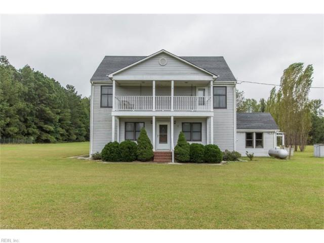 356 Collins Rd, Suffolk, VA 23438 (#10182902) :: The Kris Weaver Real Estate Team