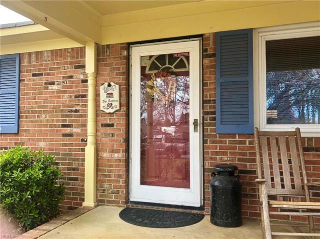 1425 Norlina Dr, Chesapeake, VA 23322 (#10182951) :: Green Tree Realty Hampton Roads
