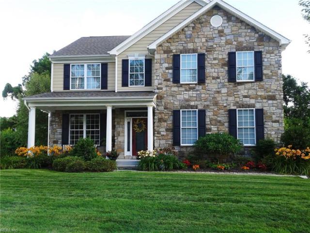 417 Quaker Ridge Ct, Suffolk, VA 23435 (#10183183) :: Green Tree Realty Hampton Roads