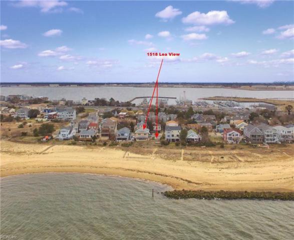 1518 Lea View Ave, Norfolk, VA 23503 (#10183499) :: Austin James Real Estate