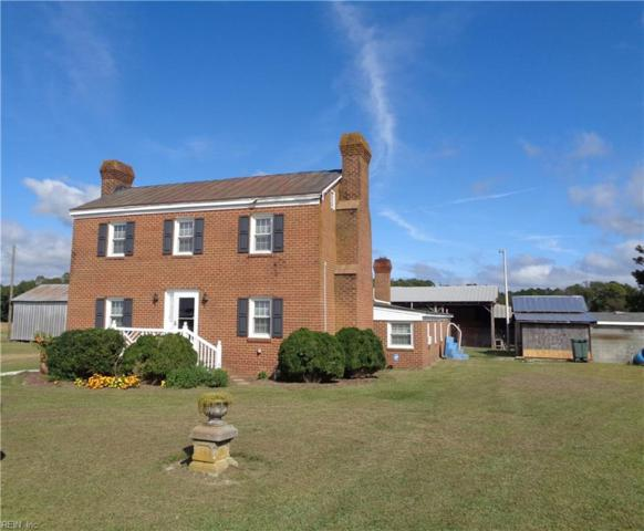 29445 Walters Hwy, Isle of Wight County, VA 23315 (MLS #10183789) :: Chantel Ray Real Estate