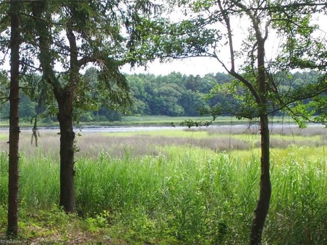 3.29 Ac Firman St, Chesapeake, VA 23323 (#10184063) :: Berkshire Hathaway HomeServices Towne Realty