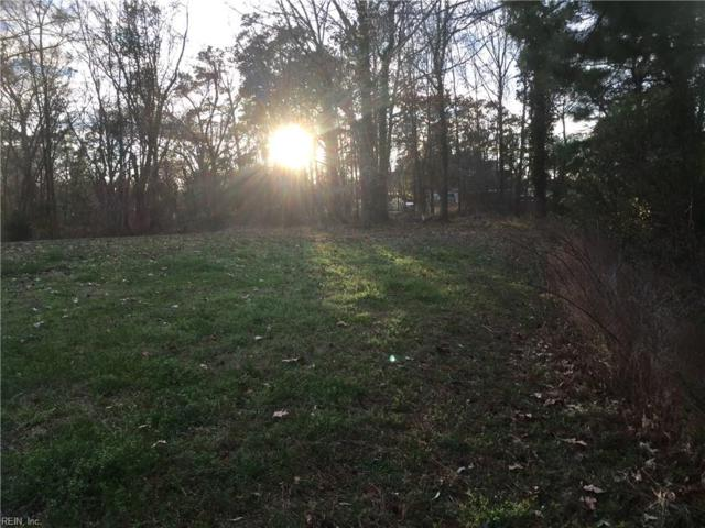 42 Ashe Meadows Dr, Hampton, VA 23664 (#10184095) :: Abbitt Realty Co.