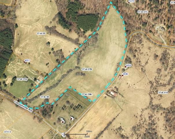 20+ACR Carsonville Rd, Other Virginia, VA 24330 (#10185951) :: The Kris Weaver Real Estate Team