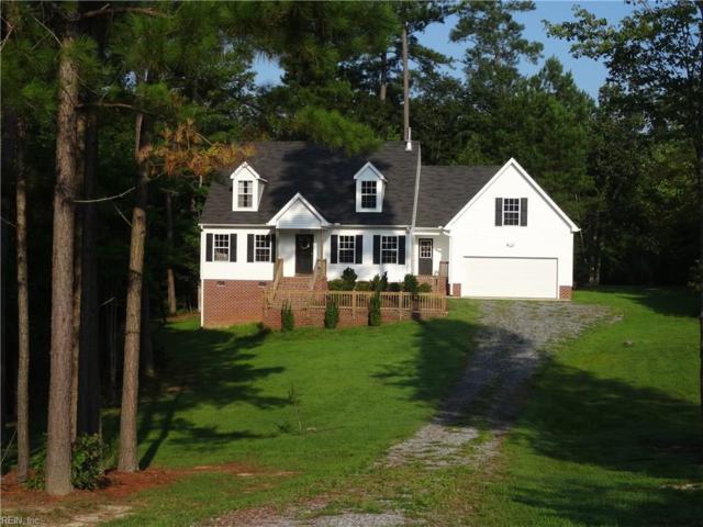 60 Cecelia Ct, Surry County, VA 23883 (MLS #10186633) :: AtCoastal Realty