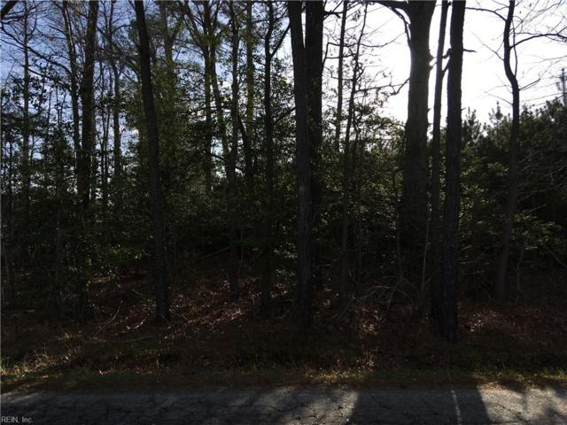 01 Brewers Neck Blvd, Isle of Wight County, VA 23314 (#10187671) :: Abbitt Realty Co.