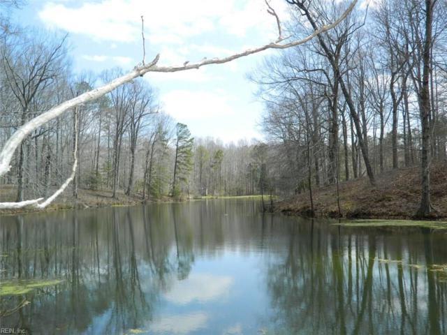 LOT 12 Lees Neck Farm Rd, Gloucester County, VA 23149 (#10188213) :: Resh Realty Group