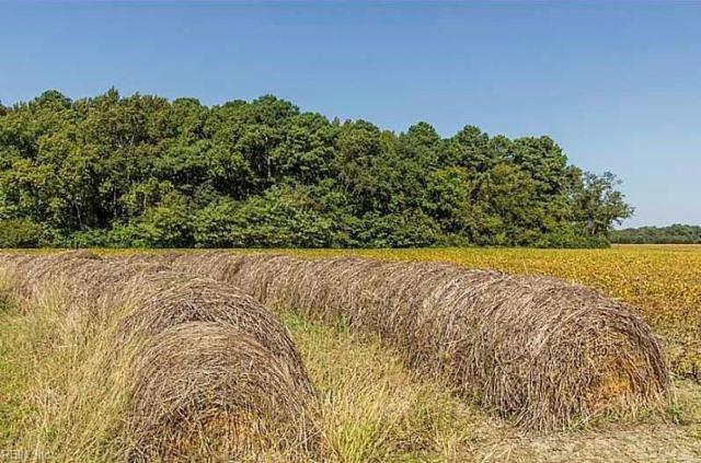 Lot 9 Virginia Ln, Northampton County, VA 23350 (#10188540) :: The Kris Weaver Real Estate Team