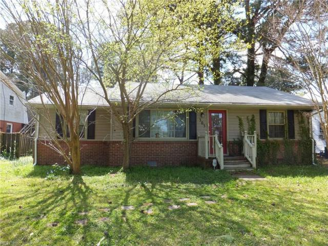 303 Tareyton Ln, Portsmouth, VA 23701 (MLS #10188557) :: Chantel Ray Real Estate