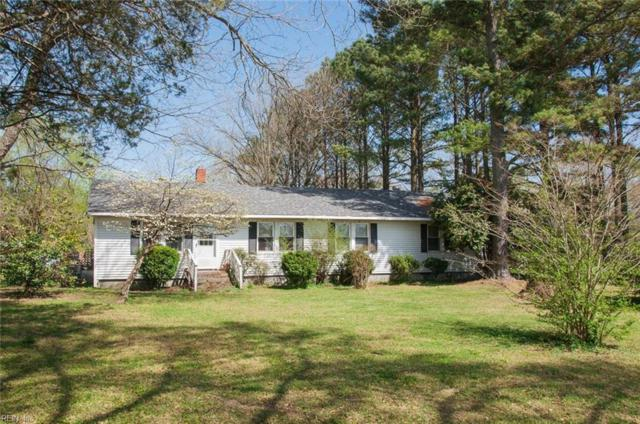 17517 Riddick Rd, Isle of Wight County, VA 23430 (#10188612) :: The Kris Weaver Real Estate Team