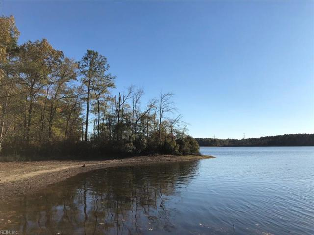 45.5ac Diascund Reservoir Rd, New Kent County, VA 23089 (#10188632) :: The Kris Weaver Real Estate Team