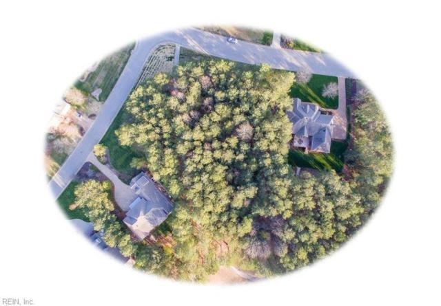 5530 Tyshire Pw, New Kent County, VA 23140 (#10189067) :: The Kris Weaver Real Estate Team