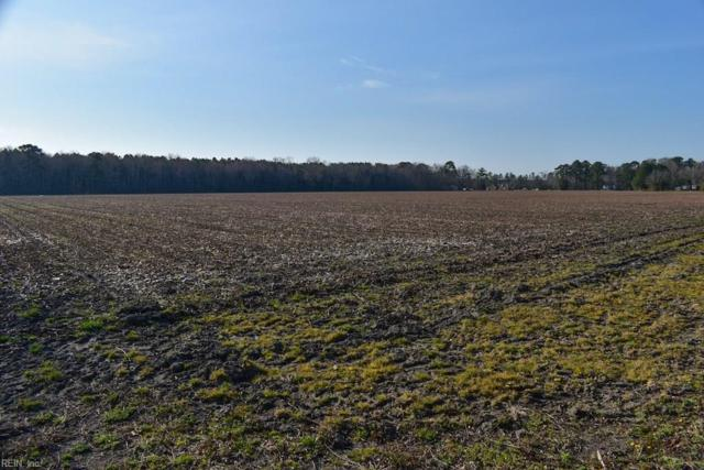 30 Ac Red Bank Rd, Northampton County, VA 23307 (#10189150) :: Abbitt Realty Co.