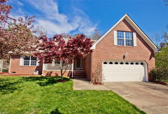 13 Appaloosa Ct, Hampton, VA 23666 (MLS #10189165) :: Chantel Ray Real Estate