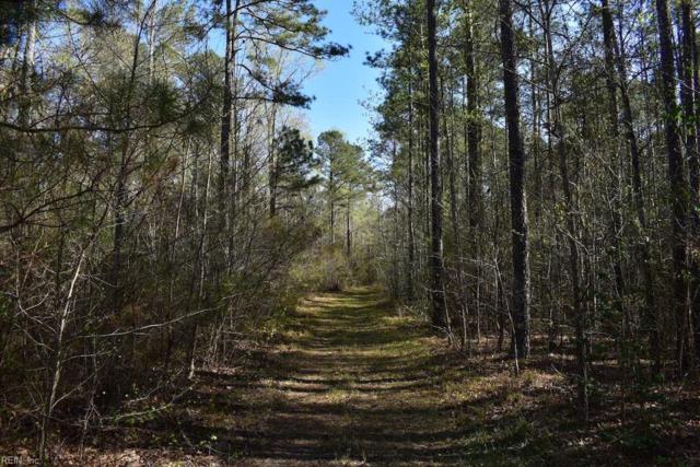 74 Ac Tucker Swamp Rd, Southampton County, VA 23866 (MLS #10189840) :: Chantel Ray Real Estate