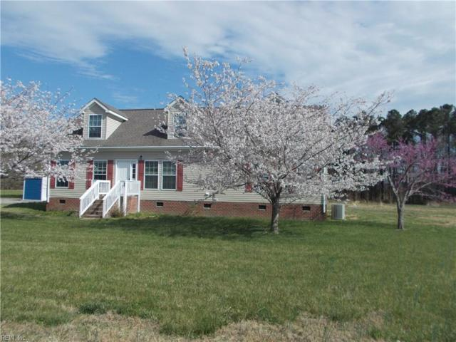 15275 Turner Dr, Isle of Wight County, VA 23430 (#10189942) :: The Kris Weaver Real Estate Team