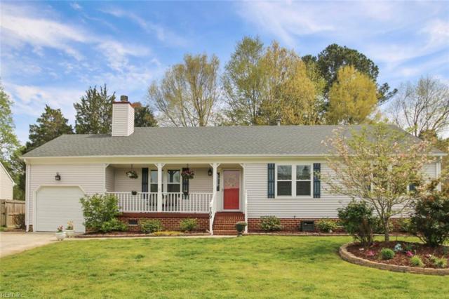 709 Sand Drift Ct, Chesapeake, VA 23322 (#10190027) :: The Kris Weaver Real Estate Team