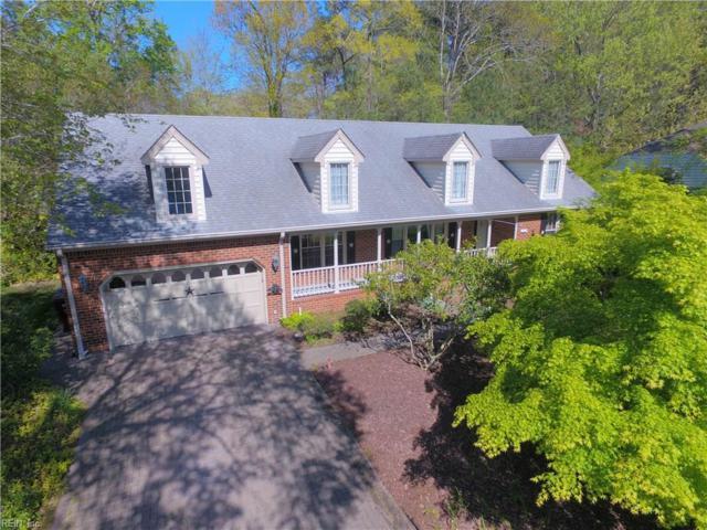 329 Cedar Ln, Chesapeake, VA 23322 (#10190083) :: Reeds Real Estate