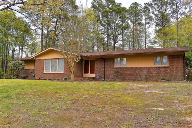 101 Pioneer Ln, York County, VA 23692 (#10190246) :: RE/MAX Central Realty