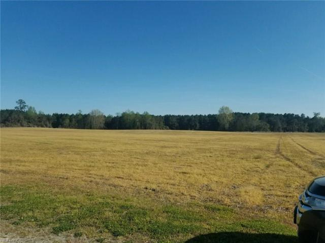 29.9A Indian Town 59-26C Rd, Southampton County, VA 23837 (#10190291) :: The Kris Weaver Real Estate Team