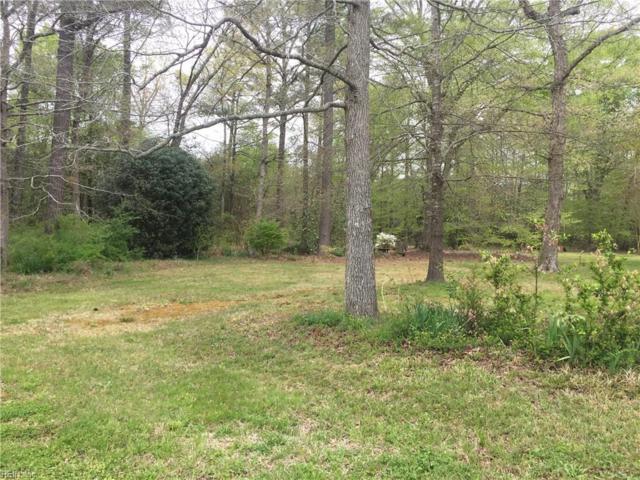 388 Greenway Rd, Suffolk, VA 23434 (MLS #10190449) :: Chantel Ray Real Estate