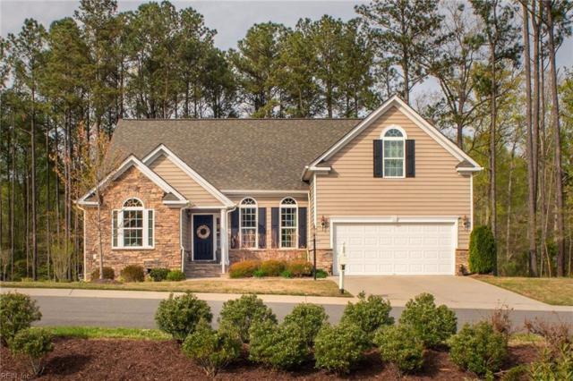 9316 Ashwood Ct, James City County, VA 23168 (#10190927) :: Atkinson Realty