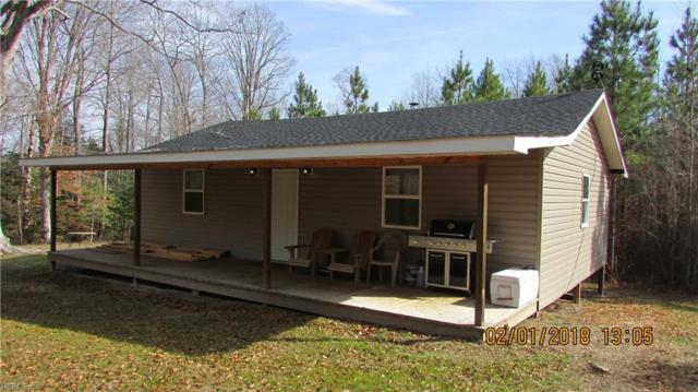 47 Ac Southampton Pw, Southampton County, VA 23844 (#10190972) :: The Kris Weaver Real Estate Team