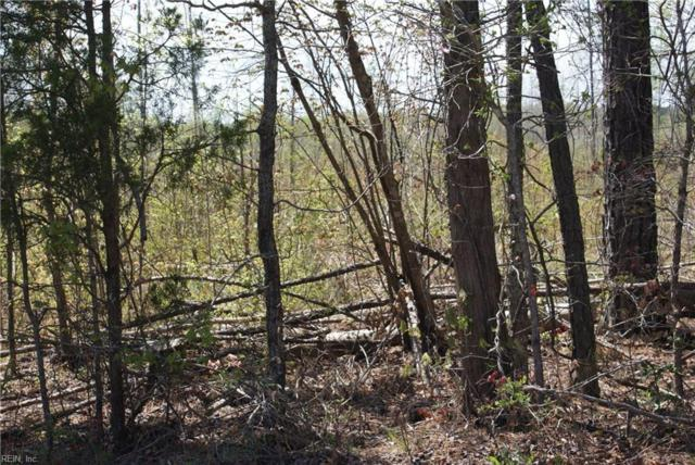 27 Ac Shippings Rd, Dinwiddie County, VA 23872 (#10191006) :: Austin James Real Estate