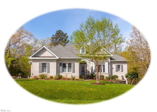 3327 Morning Mist Ln, James City County, VA 23168 (#10191851) :: The Kris Weaver Real Estate Team