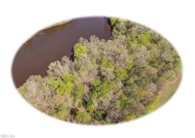 9989 Mill Pond Rn, James City County, VA 23168 (#10191963) :: The Kris Weaver Real Estate Team