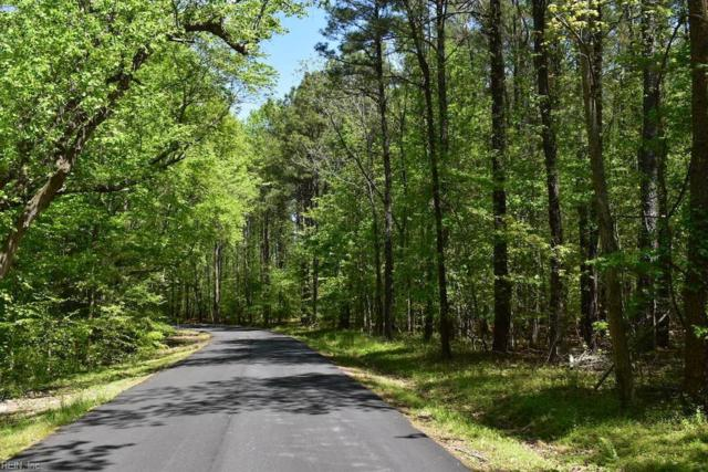 13 Ac Queens Point Dr, Middlesex County, VA 23092 (#10192035) :: The Kris Weaver Real Estate Team