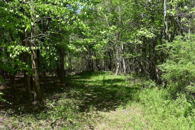 10 Ac Queens Point Dr, Middlesex County, VA 23092 (#10192038) :: Abbitt Realty Co.