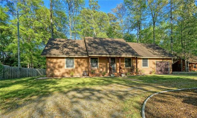 3053 Tyre Neck Rd, Chesapeake, VA 23321 (#10192163) :: Reeds Real Estate