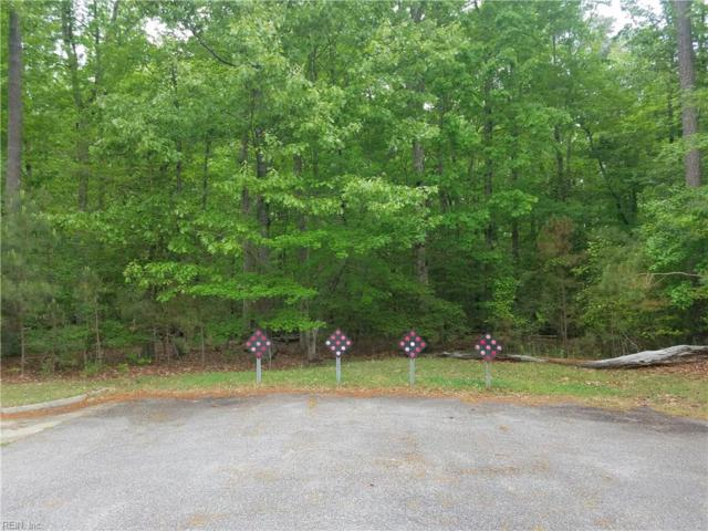 305 Tallyho Dr, York County, VA 23693 (#10193372) :: The Kris Weaver Real Estate Team
