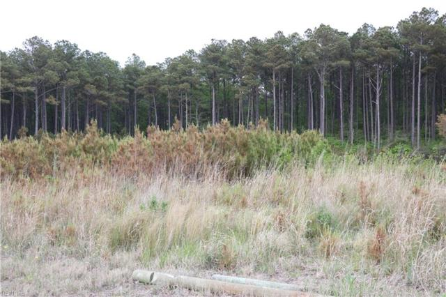 LOT 6 Peaceful Beach Est, Northampton County, VA 23398 (#10193384) :: Abbitt Realty Co.