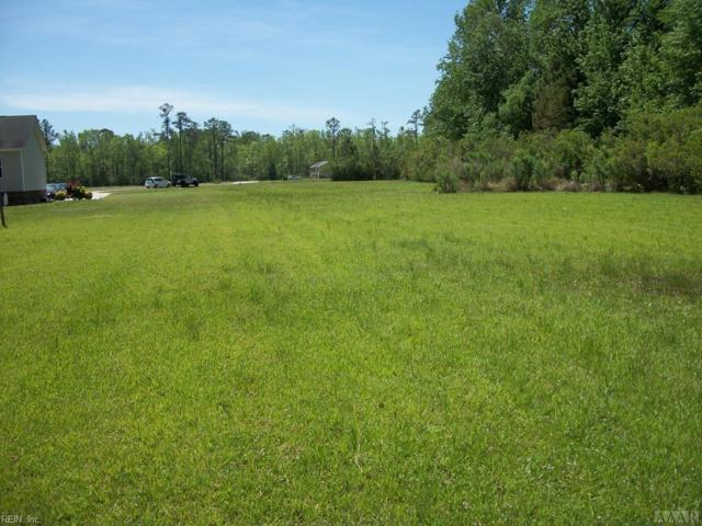 99 Pearce Point Dr, Tyrrell County, NC 27925 (MLS #10193401) :: Chantel Ray Real Estate