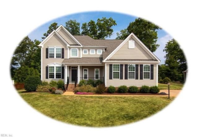 3048 Torrington Trl, James City County, VA 23188 (#10193428) :: The Kris Weaver Real Estate Team