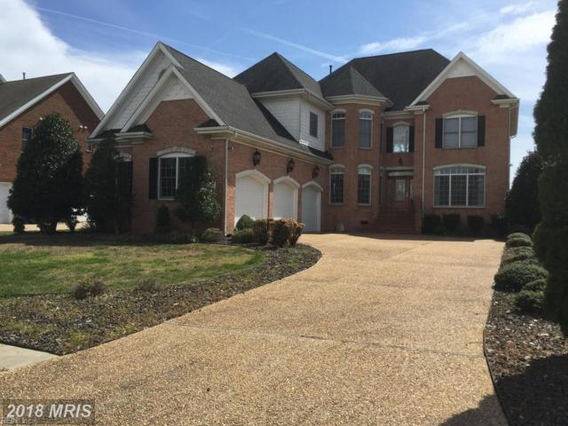 113 Watch Harbor Ct, Suffolk, VA 23435 (#10193484) :: Reeds Real Estate
