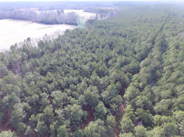 196 Ac Beaver Dam Rd, Sussex County, VA 23890 (#10193603) :: The Kris Weaver Real Estate Team