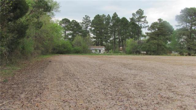 9*80 E Moore Farm Ln, Suffolk, VA 23434 (#10194116) :: The Kris Weaver Real Estate Team