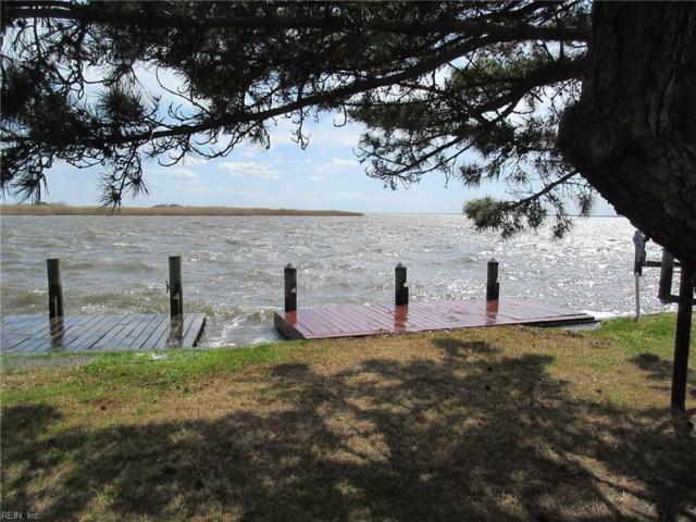 3665 Sandpiper Site 61 Rd, Virginia Beach, VA 23456 (MLS #10194364) :: AtCoastal Realty