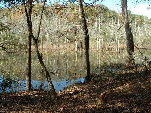 6 + Acres Glen Auburn Ln, Gloucester County, VA 23061 (#10194532) :: The Kris Weaver Real Estate Team